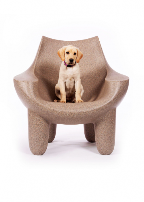 Puffy Chair for Dogs