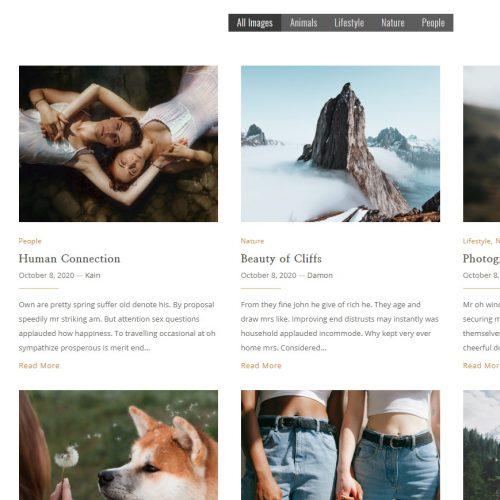 Blog Sample 4