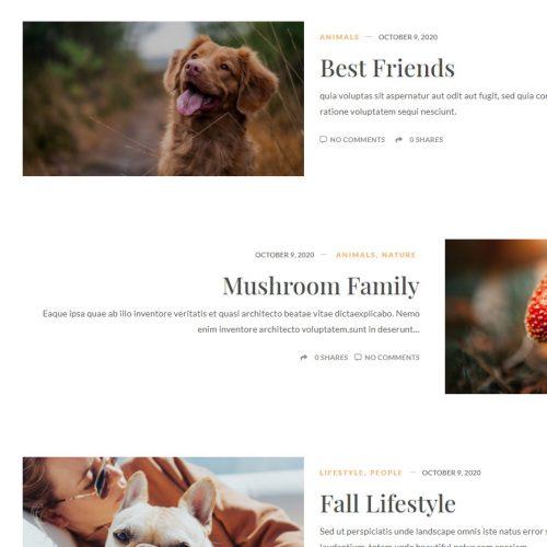Blog Sample 7